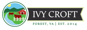 Ivy Croft, Red Devons, Forest, Virginia, All Natural Beef